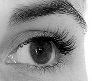 Eyelash extensions after photo Sophie